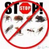 شركة رش مبيدات ومكافحة حشرات بالرياض