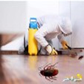 شركة تنظيف الشقق والخزانات ورش الحشرات