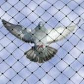 تركيب شبك حماية للشبابيك طارد الحمام والطيور
