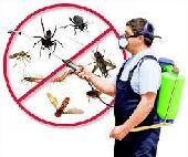 شركه مكافحة حشرات رش مبيد رش دفان غسيل خزانات
