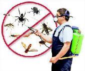 مكافحة حشرات رش مبيدا للدفان تنظيف عزل خزانات