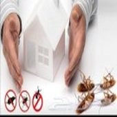 رش مبيدات ومكافحه حشرات وعزل الخزانات