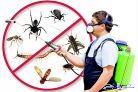 رش مبيدات_مكافحه الصراصير والنمل_رش حشرات