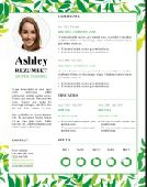 كتابة وتصميم سيرة الذاتية باحترافية لتوظيف CV