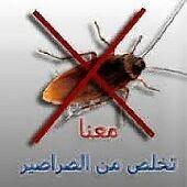 شركة مكافحة حشرات وتنظيف منازل شقق خزانات