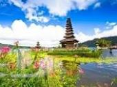 عرض إندونيسيا شهر يناير بدون طيران