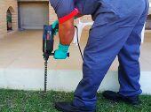 شركة رش مبيدات ومكافحة الحشرات ورش دفان بحائل