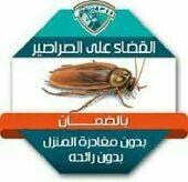 شركة رش حشرات  بالمدينة المنورة 0508065711