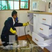 شركة مكافحة حشرات ورش مبيدات بأعلى جوده وأمان