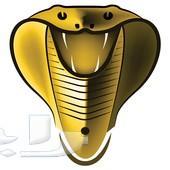 عرض خاص اشتراك iptv كوبرا الذهبي