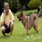 تدريب جميع انواع الكلاب