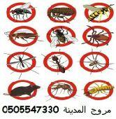 شركة مكافحة وإبادة الحشرات والقوارض بالمدينة