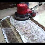 شركه تنظيف ومكافحه حشرات بجيزان0532510118