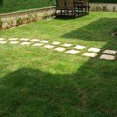 تصميم وتنسيق حدائق