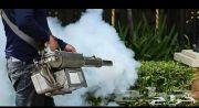 شركة رش مبيدات مكافحة حشرات رش صراصير نمل