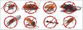 شركة تنظيف ومكافحه حشرات بالضمان