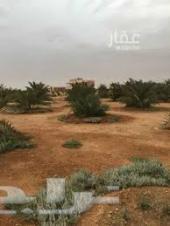 مزرعتين للبيع في محافظة السليل بمنطقة الشدية
