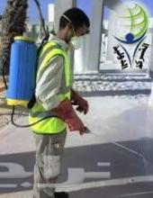 رش مبيد رش مبيدات وتنظيف فلل وقصور وبيوت