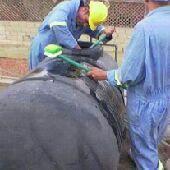 شركة تنظيف خزانات المدينة المنورة