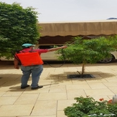 مكافحة حشرات رش مبيدات وتعقيم كامل للمنزل