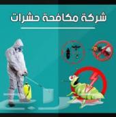 شركة مكافحة حشرات مكافحة الحشرات رش مبيدات