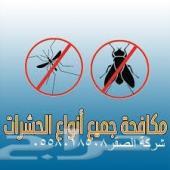 مكافحة الحشرات بالضمان ونظافة منازل بالرياض