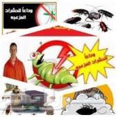 شركة مكافحة حشرات ونمل ابيض بالدمام الشرقيه