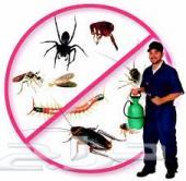مكافحة حشرات. رش مبيدات.