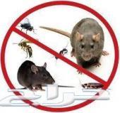 شركة مكافحة حشرات 0502713127  رش مبيد رش مبيد