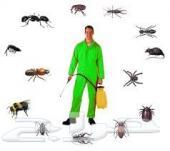 شركة تنظيف سجاد بالدمام رش مبيد حشرات بالضمان