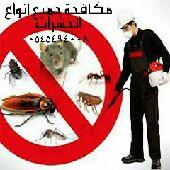 شركة مكافحة جميع أنواع الحشرات