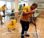 شركة رش مبيدات صراصير نمل بق وزغ