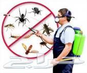 شركة رش مبيدات و مكافحة الحمام بالرياض
