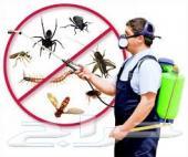 رش مبيدات رش دفان مكافحه حشرات نمل صراصير بق
