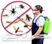 شركة تعقيم منازل مساجد رش مبيدات مكافحة حشرات