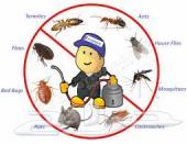 شركة رش مبيدات للحشرات ((خصومات)) رش مبيدات