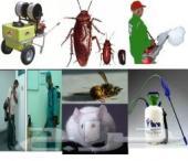 شركة رش مبيدات صراصير نمل فئران وزغ ناموس