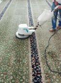 شركه نظافه وعزل خزانات ومكافحة الحشرات