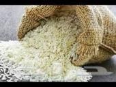 مشروع أرز