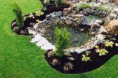 تجميل وتنسيق حدائق ثيل طبيعي وصناعي والديكور