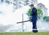 شركة رش دفان وطارد حمام ومكافحة الحشرات