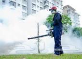 شركة مكافحة حشرات رش مبيدات مع الضمان مكافحة