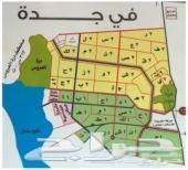 مطلوب ارض في مخططات دره العروس