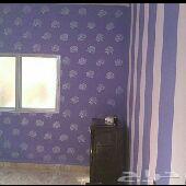 اصباغ ورق جدران عوازل الخفجي