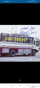 دينا ابو هاشم 6متر