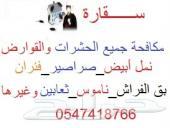 شركة مكافحة حشرات بالرياض_رش مبيدات0547418766