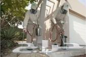 شركة مكافحة الحشرات صراصير العته بق