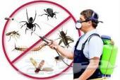 مكافحه حشرات ورش مبيد _0507583248