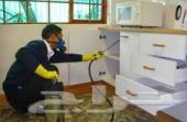 شركة رش مبيدات الصراصير النمل البق دفان مبيد