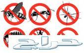 شركة مكافحة حشرات بالرياض رش المنازل من الحشر